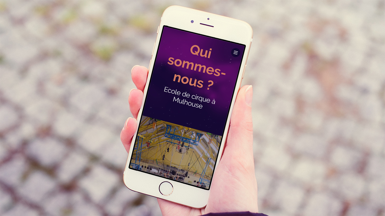 reference_ecole-cirque-zavatta-mulhouse_mobile